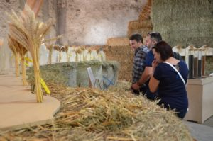agriculture festival suisse